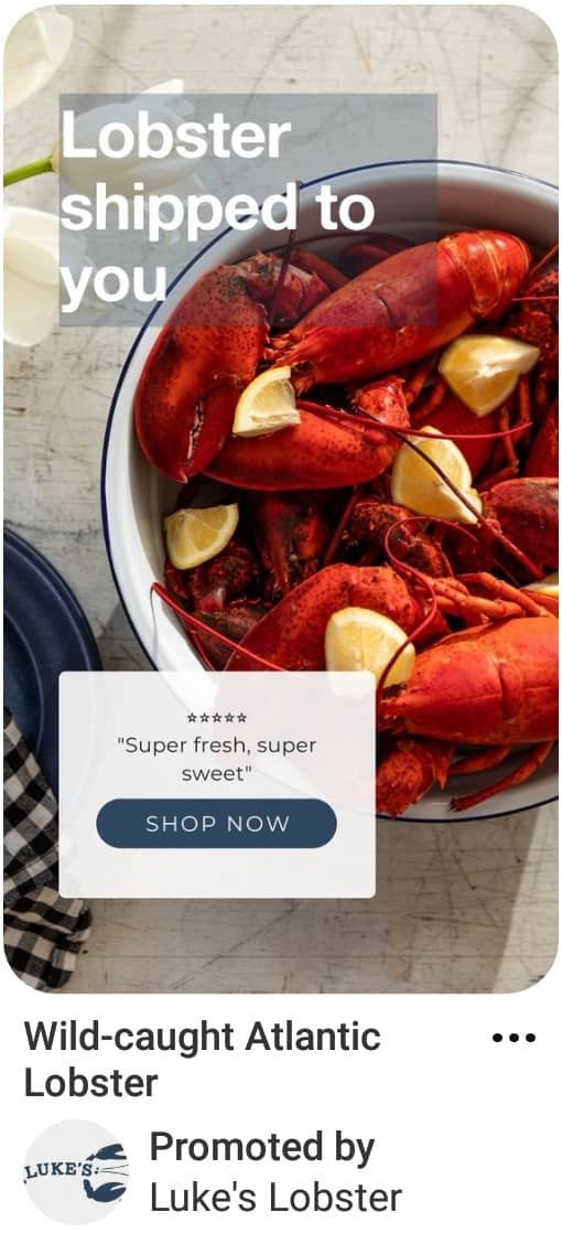 Image showing Pinterest ad specs example with call to action to shop for lobster