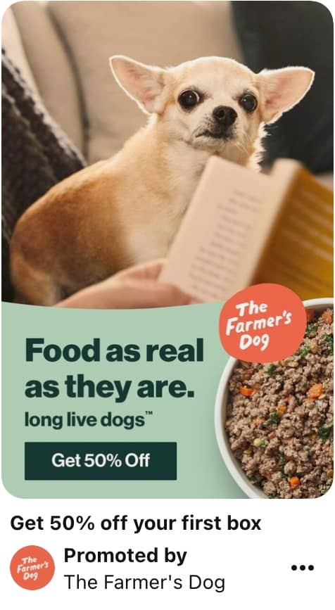 Image showing Pinterest ad specs example of Dog advert with text overlay